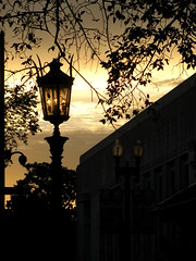 Between the Dark and the Dawn (Kurlylox1) Tags: trees light sky lamp night sunrise dark dawn day lamplight lantern folgershakespearelibrary
