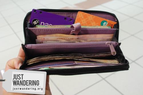 Pacsafe Toursafe Wallet