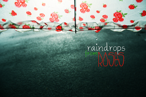 Raindrops from Roses