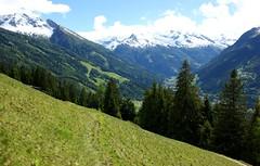 Abstieg Poserhhe II (pascal_ernst) Tags: schnee sterreich weide sommer bad himmel wolken gelb grn sonne wald gastein tal weg fichte blauer tanne pfad abstieg schneegrenze gasteiner poserhhe