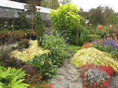 Fall in Garden Nurseries in Seattle