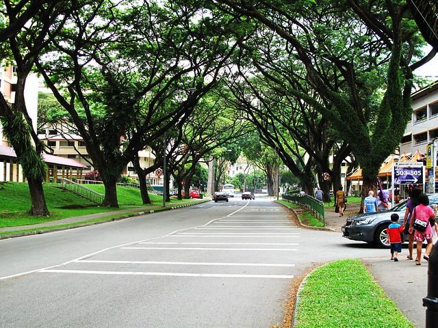 IMG_0172  Jurong West Street 52,Singapore