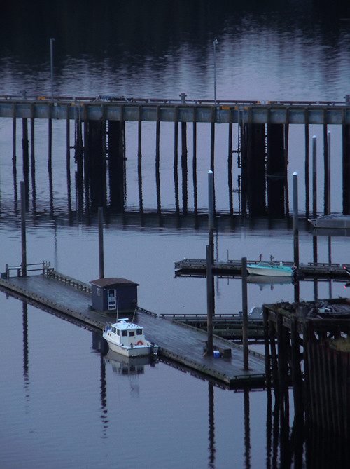 harbor pilings, Ketchikan, Alaska