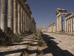 Apameia # 20 # أفاميا (schreibtnix on'n off) Tags: travelling reisen day clear syria syrien neareast blueribbonwinner naherosten apameia olympuse3 antikestätten antiquesites أفاميا
