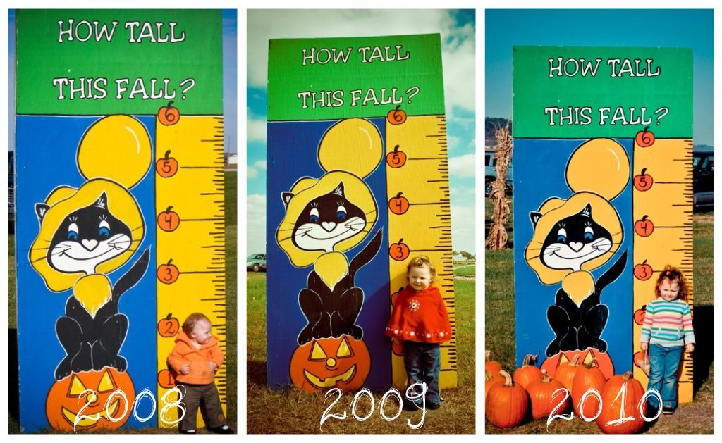 Emily, How Tall This Fall?