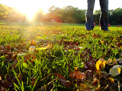 Autumn colors in the park (FeeMail) Tags: park autumn light fall germany deutschland licht sonnenuntergang sundown herbst dmmerung dortmund sunray westfalenpark