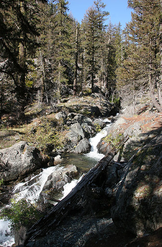 Cascading stream at Esmeralda Basin trailhead
