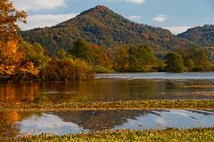 Water and hill (Karmen Smolnikar) Tags: autumn trees reflection tree water flood hill slovenia slovenija karst planina intermittentlake