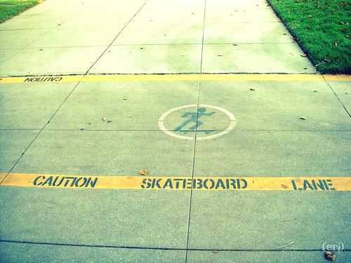 skateboard lans