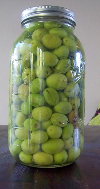 Olives 009