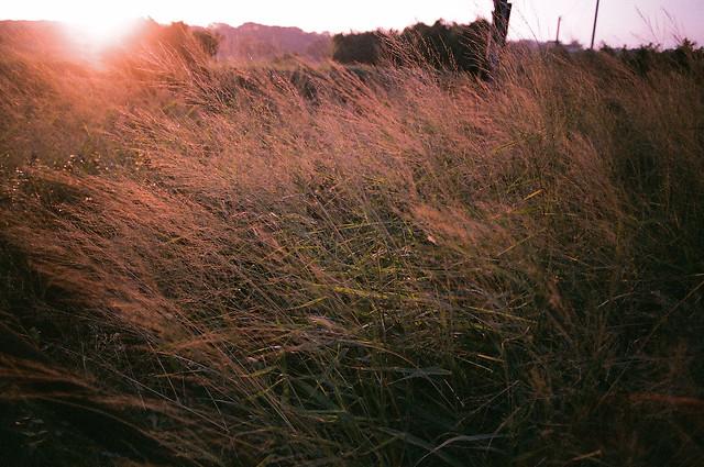 『銀鹽時代』 底片隨拍 初體驗