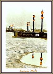 las luces en el río