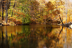 Fall at Seven Springs (contourone) Tags: fall colors pennsylvania sevensprings autumnfest somersetcounty
