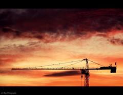 dreamy sky (Le***Refs *PHOTOGRAPHIE*) Tags: sunset sky silhouette clouds nikon explore dreamy frontpage grue coucherdesoleil 105mm d90 explored lerefs