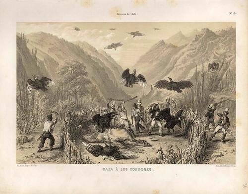 024-Caza a los condores-Atlas de la historia física y política de Chile-1854-Claudio Gay