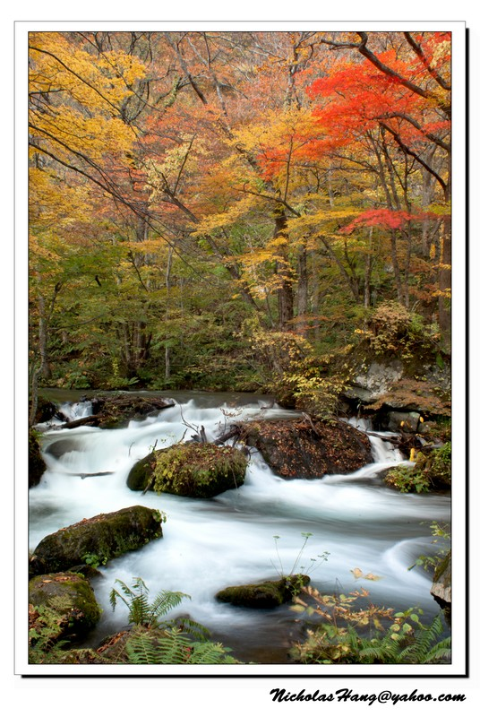 記得那年十月,我在奧入瀨溪流