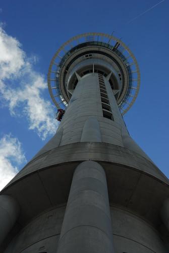 Auckland 016