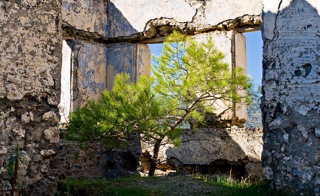 Kamelassos: Abandoned House