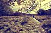 Paseo Otoñal (oo Felix oo) Tags: autumn españa way walking spain camino felix progress otoño martinez ecologico ecologist avanzar felmar