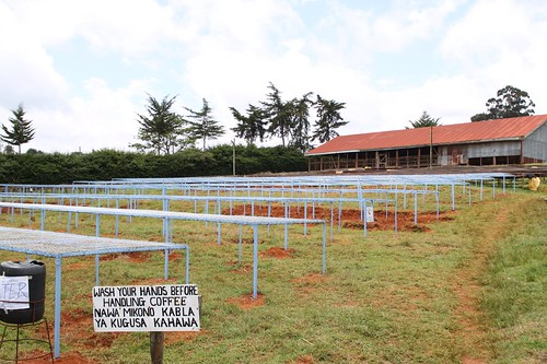 8 new drying tables funded by TW