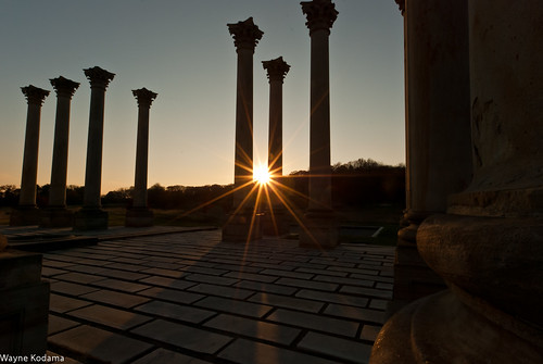 240/365 - National Capitol Columns
