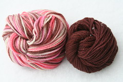 Yarn Pirate Aran BFL-- Neapolitan + Chestnut trim