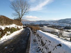 On the way to the Howgill Fells in Winter (Tony Worrall Foto) Tags: road uk november blue trees winter england sky white snow cold ice wet beauty stone clouds season path yorkshire north group scenic row hills cover covered freeze cumbria fells frame chilly chiller walls icy chill hilly the snowey northernengland howgill picturepostcardview