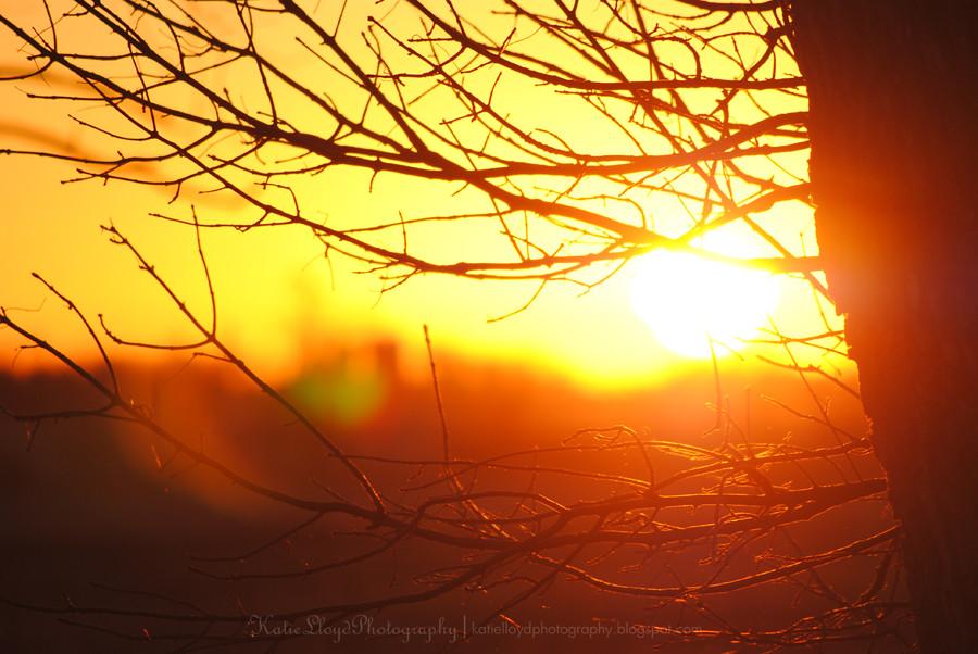 Sunrise-in-Iowa-5
