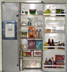 My Kitchen Littles Fridge (CarolineSwing) Tags: fruit milk salad fridge stainlesssteel doll ketchup barbie drpepper spraypaint soda refrigerator rement stainless megahouse  kitchenlittles orcara
