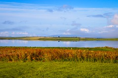 Reflections on the Loch of Harray (rustyruth1959) Tags: nikon nikond3200 tamron16300mm scotland orkney twatt lochofharray morning loch water reflections grass landscape outdoors building clouds sky mist fencepost fields ploughed farms farm farmland gettyimages