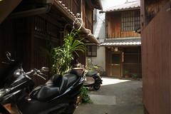 Kamigyo#28 (tetsuo5) Tags: 京都 上京区 上七軒 kyoto kamigyoku kamishichiken rx100ⅲ