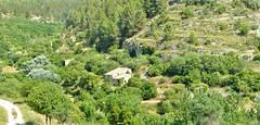 Betreten verboten! Parco di Molina, Ragusa Sicilia (zikade) Tags: parcodiemolina ragusa sicilia europäischesgeld divieto unbetretbar