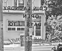 Coin Laundry open 7 days (Sally E J Hunter) Tags: toronto blackwhite noiretblanc laundromat moo1