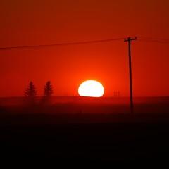 Hazy Sunset (DustinGinetz.Photography) Tags: sunset red orange sun mist canada tree fog set pine haze wire power down pole electricity saskatchewan hazy spruce gini canonef70200mmf4lusm reginask thechallengefactory dustinginetz