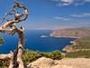 Deep Blue Sea (pantha29) Tags: ocean wood blue sea tree saturated view hill vivid olympus trunk rodos rhodes zuiko e510 1260mm