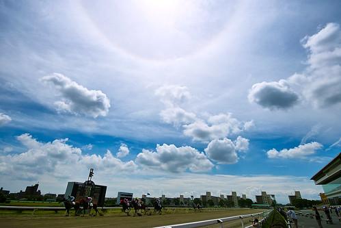 フリー写真素材, 運動・スポーツ, 競馬, 空, 雲, 日本, 愛知県,