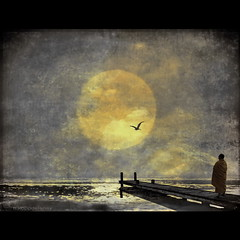 Zen Gold (h.koppdelaney) Tags: life moon art digital photoshop gold energy state symbol spirit buddha picture monk buddhism philosophy zen mind hood wisdom metaphor stillness psyche symbolism calmness psychology archetype oneness koppdelaney magiayfotografia thelittlebookoftreasures