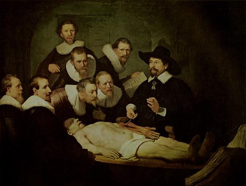 林布蘭解剖學