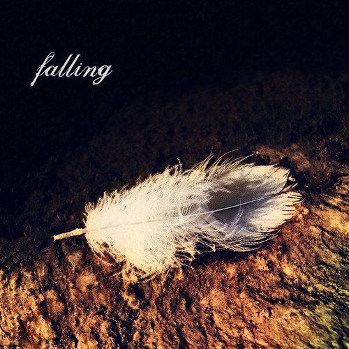 falling - booklet cover