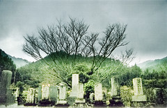 (leif nash) Tags: mountains film graveyard japan vintage death still spirits silence nippon haunting gloom