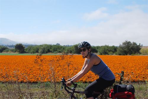 CalivIntage:自行车之旅的结尾