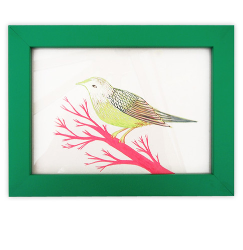 Green Bird Framed Original Drawing