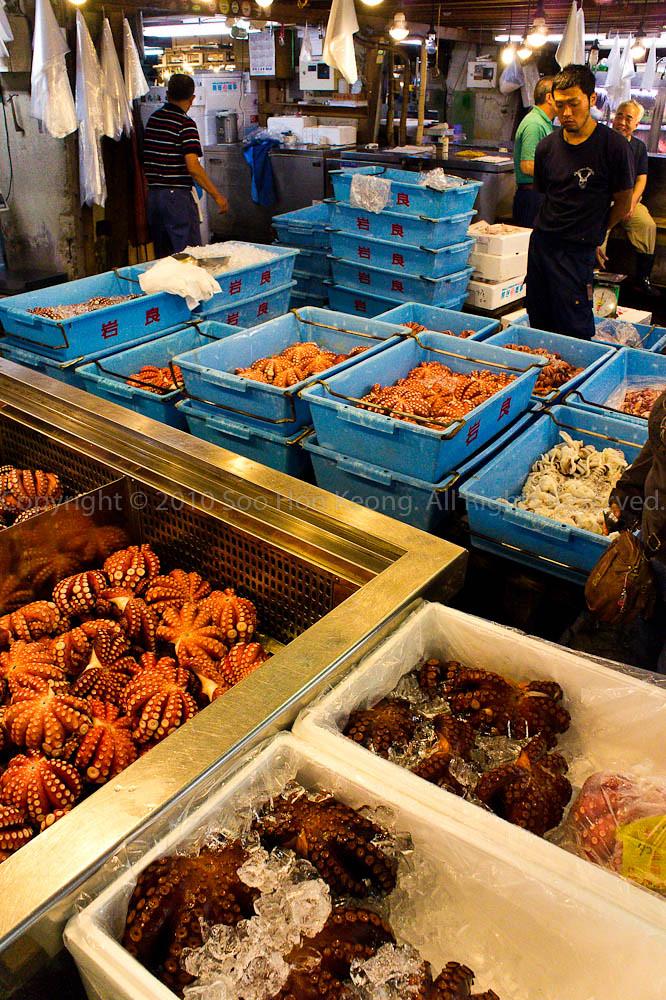 Seller @ Tsukiji Market, Tokyo, Japan