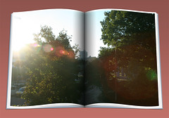 GoodMorning: 6 september 2010 (gill4kleuren - 11 ml views) Tags: morning sky people building tree window station clouds roc leiden office looking good working nederland ne netherland goodmorning centraal wold sunrishe