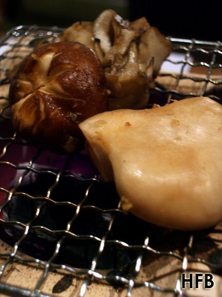 tetsu mushroom (7)