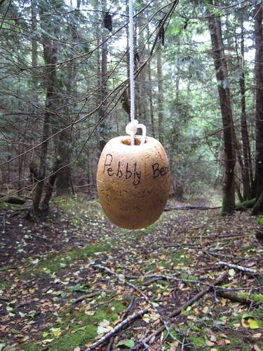 trailmarker buoy