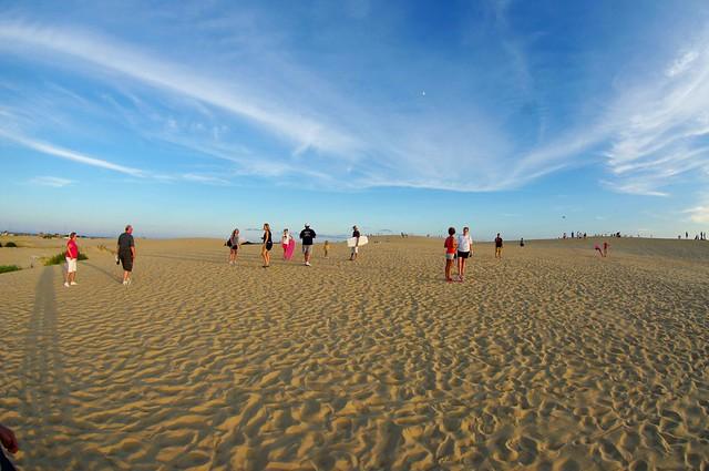 Fishy Dunes