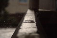 Explode on Impact (thskyt) Tags: desktop wallpaper macro water rain closeup drops action background drop impact droplet explode breakup sudden