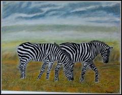 The zebras - Pastel painting (hema_s) Tags: zebra zebrapainting pastelspastelpaintingoilpastels
