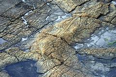 The Jurassic Coast: Wave Cut Platform at Broad Bench (Nick L) Tags: uk sea grass platform cliffs dorset limestone fields kimmeridge jurassiccoast clavelltower wavecut broadbench
